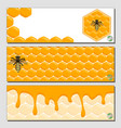 sweet natural product vector image vector image