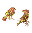 two ethnic bird vector image vector image