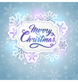 Christmas banner with greeting inscription vector image