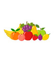 heap of natural fruits isolated on white vector image