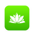 lotus flower icon green vector image vector image