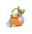 picnic basket with blanket fruits lemonade drink vector image