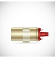 Igniter coil car part vector image