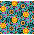 Suzani pattern vector image vector image