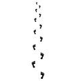 Trail of bare footsteps vector image vector image
