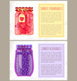 canned strawberries and blueberries in jar banners vector image