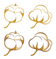 Cotton plants vector image