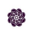 indian rose flower icon organic plant flower vector image vector image