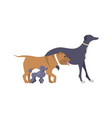 logo with a dogs vector image
