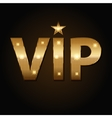 VIP golden icons in black background vector image vector image