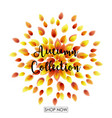 autumn leaves falling vector image