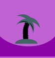 flat icon design collection palm tree vector image