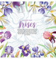 greeting card with iris flowers vector image
