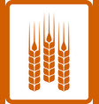 icon with wheat ears vector image