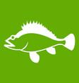 rose fish sebastes norvegicus icon green vector image vector image