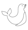 seal animal design vector image vector image