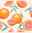 whole grapefruit with slices hand drawn design vector image