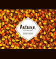 autumn collection sale banner vector image