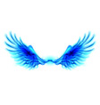 Blue fire wings vector image vector image