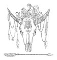 Drawing ornate skull of cow vector image