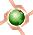 Hands holding a green earth with a ladybug vector image vector image
