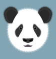 panda isolated on color background vector image