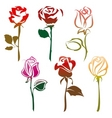 roses sign vector image vector image