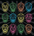 bright mexican skulls collection vector image