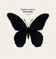 butterfly species papilio memnon memnon vector image