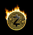 crypto currency zcash golden symbol on fire vector image vector image
