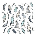 feathers set hand drawn vector image vector image