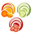 fruits with decoration vector image vector image