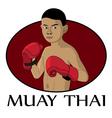 muay thai kid vector image
