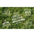 Brazil 2014 vintage label set vector image vector image