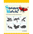 Game template for shadow matching bugs vector image