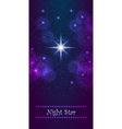 Night star on the sky vector image vector image