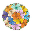 tropical flowers hibiscus in bouquet of sphere vector image