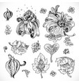black and white drawing fantasy flowers and vector image vector image