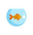 fish in round aquarium icon flat style vector image vector image