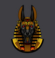 gold anubis head vector image
