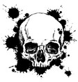 human skull with black ink blots vector image