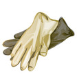 latex gloves isolated on a white background vector image vector image