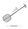 samisen in hand-drawn style vector image