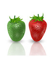 set of realistic sweet and fresh strawberries vector image vector image