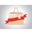 Shopping bag with ribbon vector image