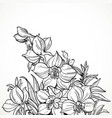 black and white graphic line drawing flowers vector image vector image