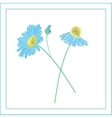 hand-drawn daisies flowers vector image