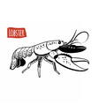 Lobster black and white vector image vector image