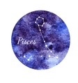 Watercolor horoscope sign Pisces vector image