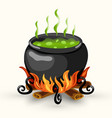 wtch cauldron with boiling poison and bonfire vector image